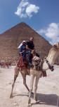 Camel - Männlich